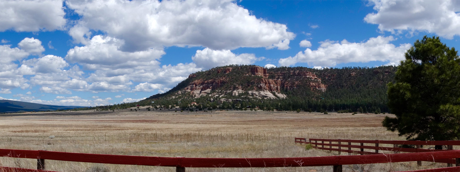 Living In Candy Kitchen New Mexico Land For Sale